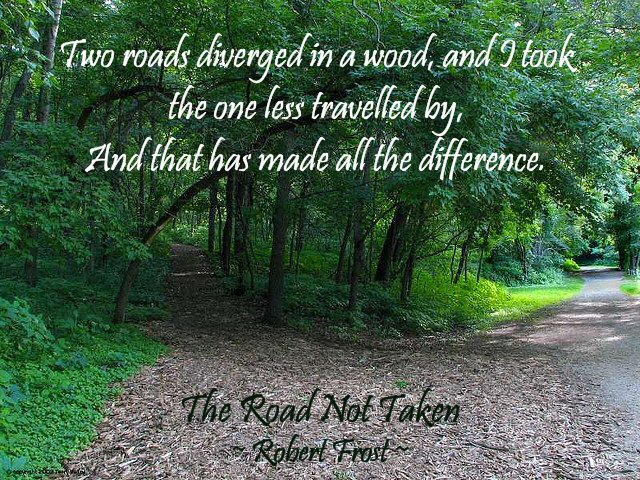 The-Road-Not-Travelled